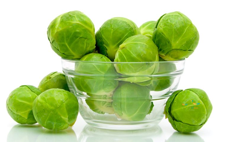 Những lợi ích đặc biệt từ bắp cải tí hon mà bạn chưa biết.