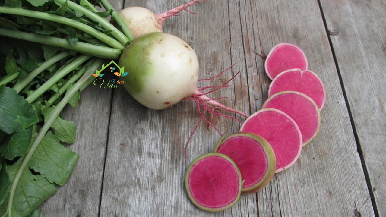 Củ cải ruột đỏ